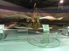 玉虫型飛行機
